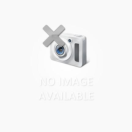 Timing Belt Epson TX111